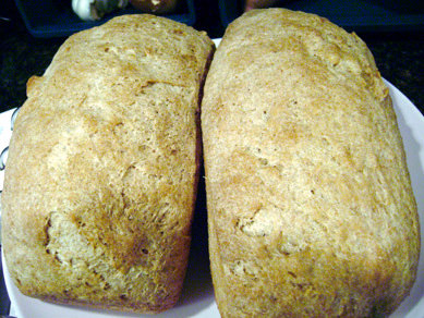 ugly whole wheat honey bread