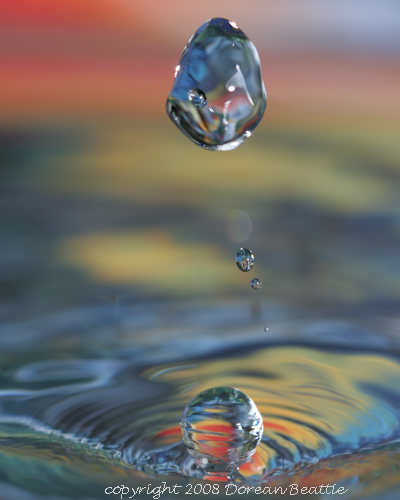 Cool Desktop Pictures on Cool Free Desktop Wallpaper Macro Water Droplet Spettacolopuro
