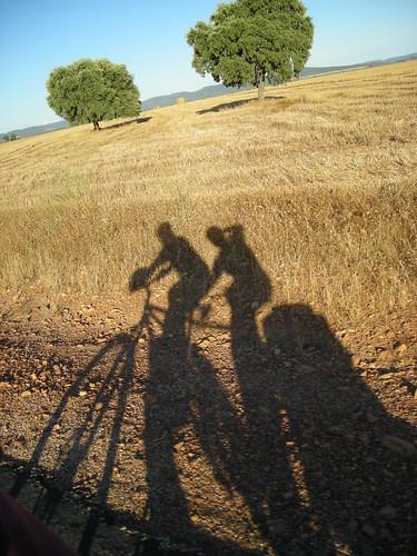 Sombras pedaleando