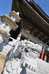 Yakcheon Temple, Jeju, South Korea