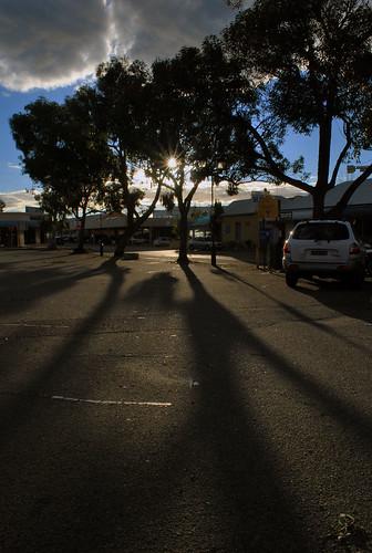 Boreal Shadow
