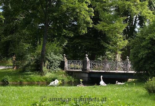 DonaueschingenPark 2008