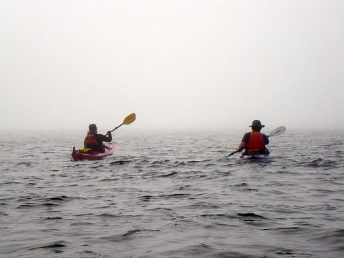2008-08-10 Chatham Island 435