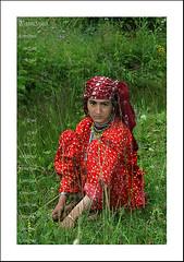 Rose of the mountians (KamiSyed.) Tags: wedding pakistan man men kids women culture arab desi pakistani punjab cultural punjabi islamabad weddingphotographer rawalpindi urdu taxila weddingphotography woaman studio9 weddingphotographs weddingpix kamisyed kamransafdar chinak we1