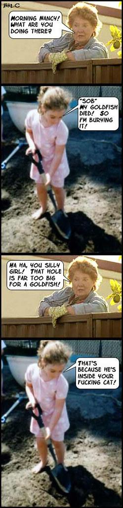 Gold_Fish