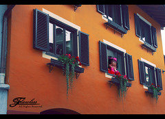 Waiting 4 u .. } (Flawless ) Tags: life pink flowers windows red roses summer orange cute green colors girl canon austria kid waiting colorful pretty zellamsee 2008 canon400d panoramafotogrfico