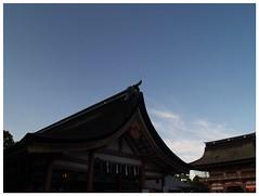 Blue Sky 080822 #01