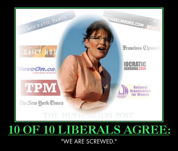 Sarah Palin : 10 of 10 liberals agree