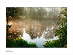 Diffuse lights of autumn (Regenlicht) Tags: 50mm brandenburg hennigsdorf naturesfinest niederneuendorf goldstaraward multimegashot