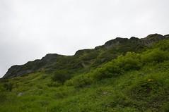 高原沼から高根ヶ原を見上げる