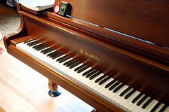piano lessons for adults picture