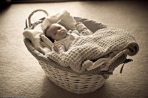 Baby Daniel - Baby in a basket