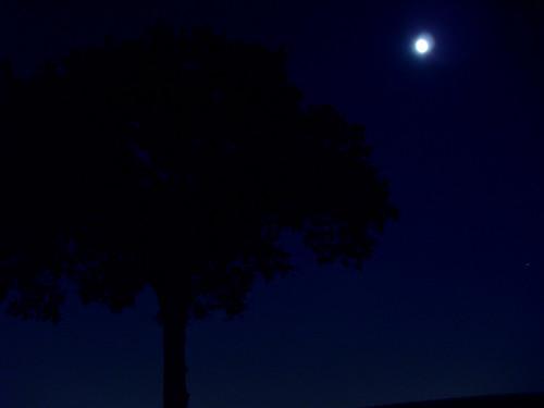Midnight blue:  October 11, 2008
