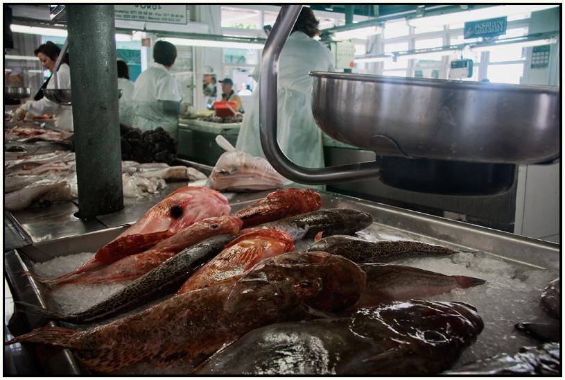peix de  sopa