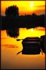 Yellow world (Cpt<HUN>) Tags: light sky color tree nature yellow landscape boat mood calm silence soe blueribbonwinner dvornik fineartphotos