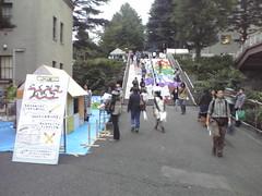 Tokyo Tech Festival - Coloured steps