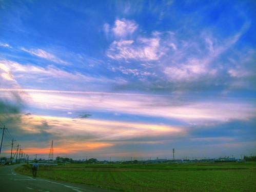 飛行機雲と夕焼けと。。。