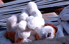 Damp bedding and cuddly toy dry in the sun - click on pic for full-size image