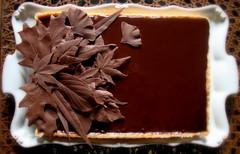 chocolate caramel nut tart (distopiandreamgirl) Tags: thanksgiving leaves ginkgo maple oak chocolate caramel willow birch tart viburnum chetzamoka