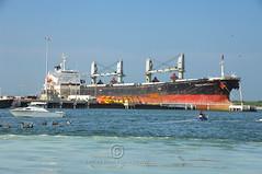 Cargo Tanker (thejeffreywscott) Tags: boat ship florida tanker cargoship bigboat portcanaveral bigship cargoboat commercialship commercialboat cargotanker