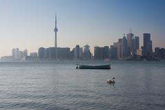 Toronto : le centre ville vu d'ailleurs
