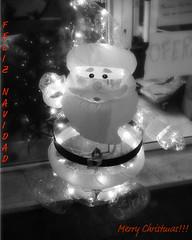 """Merry Christmas"" (Sion Fullana) Tags: barcelona christmas blackandwhite blancoynegro navidad santaclaus merrychristmas allrightsreserved iphone feliznavidad papanoel iphonephotography sionfullana sionfullanasphotography plasticsantaclauswithlights iphoneography iphoneographer sionfullana throughthelensofaniphone"