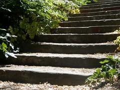 scale assolate (Flavio Piffer) Tags: light shadow sun nature lights steps step scala luci sole gradini starcaise stonestair