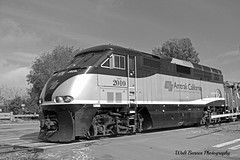 b&w Amtrak (Walt Barnes) Tags: railroad blackandwhite bw train canon eos blackwhite scenery tracks engine rail scene calif amtrak locomotive passenger pinole trackside passengertrain 60d canoneos60d eos60d wdbones99
