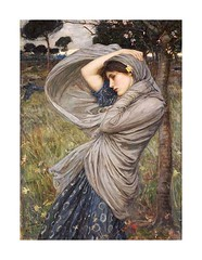 VIC290396081  01 (Yume1qaz) Tags: flowers woman plants plant storm flower weather female painting season spring women wind fineart windy stormy daffodil shawl storms 20thcentury mythology daffodils myth oneperson waterhouse 1900s 1903 preraphaelite mythical oiloncanvas boreas early20thcentury singleperson mythological johnwilliamwaterhouse onewomanonly waterhousejohnwilliam westernart britishartist victorianpictures artistmale artistsnationality britishirishart maleartist religionbelief