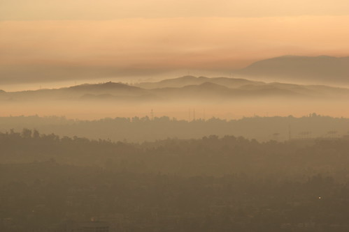 Mysterious Morning-Los Angeles.JPG