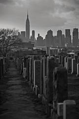 Calvary cemetery (broddi) Tags: nyc newyork building cemetery state manhattan queens empire gothamist calvary