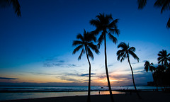 Waikiki sunset (Kanaka Menehune) Tags: ocean blue sunset sky beach palms hawaii interestingness waikiki oahu explore