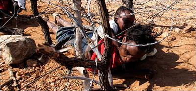 escaping zimbabwe