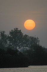 Oasi di Ostellato 2008 (franco.a) Tags: nikon alba valle ferrara d200 controluce arancione ostellato