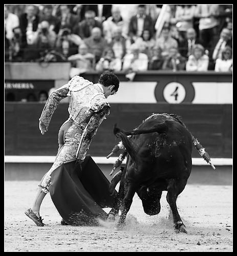 Jose-Tomas-05