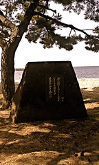 sunday afternoon in the park with a book (Sudachi) Tags: ocean park tree monument stone pine writing poetry poem sunday memory aomori    tanka tsugaru