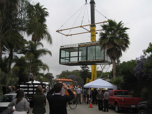 palms modular 2.jpg