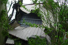 shed hit by tornado