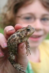 Emily and Leaper the Frog