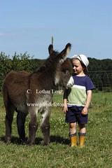 lz280704(48) (Lothar Lenz) Tags: deutschland esel 56812dohr