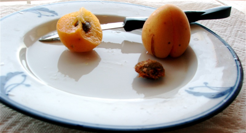 sliced_skp_and_hunza_apricots.jpg