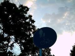 【写真】VQ3007で撮影した朝の風景(道路標識)