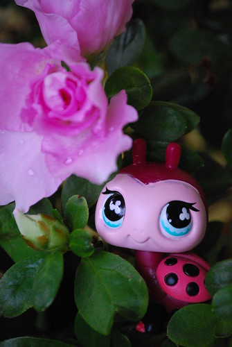 365 Toy Project : 061/365 : Hasbro, making little garden critters adorable. by ,,,^..^,,,.