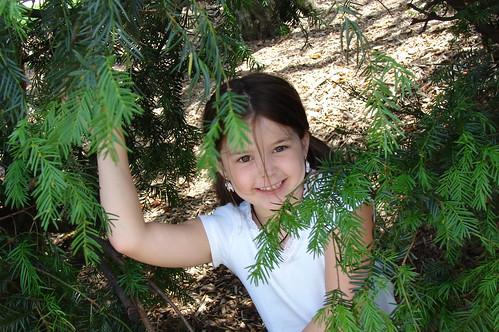 Tree Girl 3