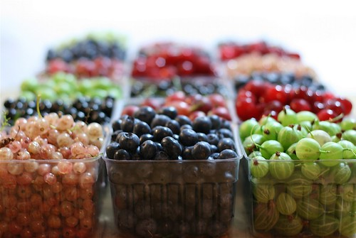 Currants and blueberries and gooseberries, oh my!