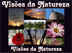 VISÕES DA NATUREZA