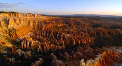 sunrise at the bryce amphitheater (charlesgyoung) Tags: utah sandstone d2x limestone brycecanyonnationalpark