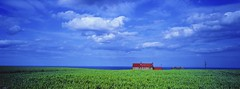 Field of Green - Whitby,North Yorkshire Coast (john lunt) Tags: uk summer england panorama film 35mm john landscape photography photo image photos kodak pano yorkshire north picture dramatic vivid rangefinder bluesky panoramic photographic farmland hasselblad whitby sensational analogue 31 xpan photogenic lunt portra160vc artcafe interestingshot xpan2 mywinners 45mmlens platinumphoto anawesomeshot flickraward theunforgettablepictures goldstaraward absolutelystunningscapes flickrbestpics globalworldawards panoramafotografica