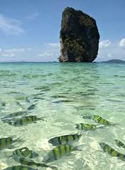Fish and Rock - Thailand (Kristo4791) Tags: sea fish beach rock landscape thailand fantastic colours marvelous krabi