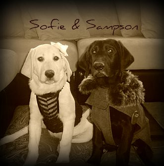 Sofie and Sampson